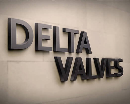 Web Design for Delta Valves, Cork
